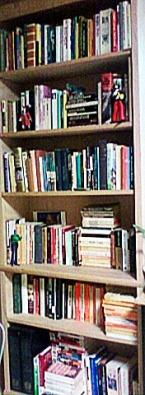 bookcase2a